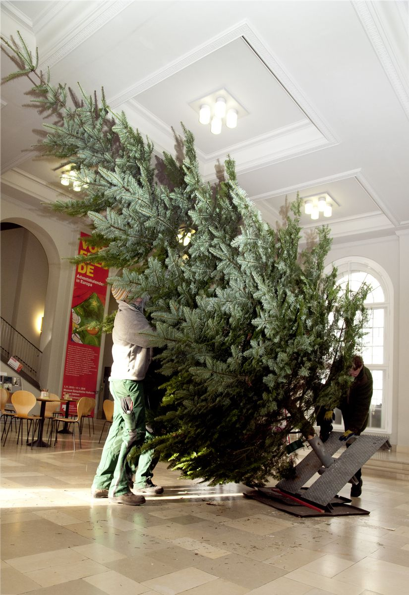 advent advent weihnachtsbaum im museum museum and the city. Black Bedroom Furniture Sets. Home Design Ideas