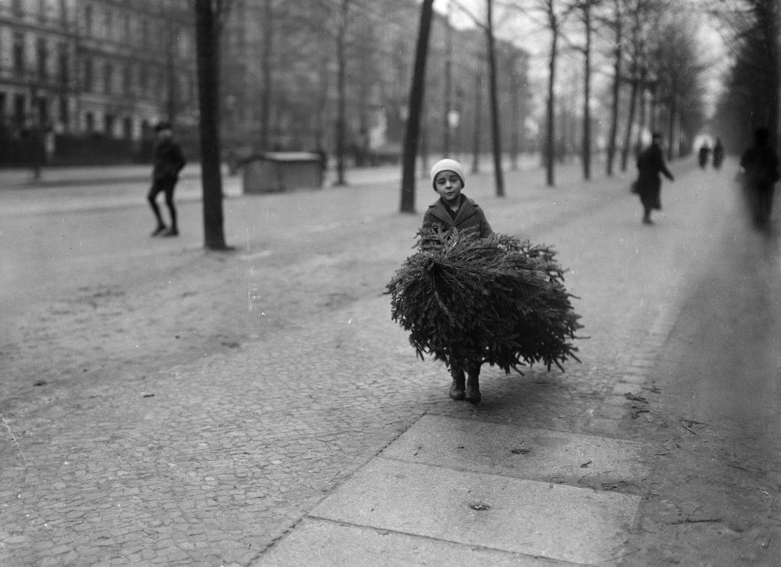 """""""Ein Kind trägt den Tannenbaum nach Hause."""" (Berlin, 1920) (c) bpk / Kunstbibliothek, SMB, Photothek Willy Römer / Willy Römer"""