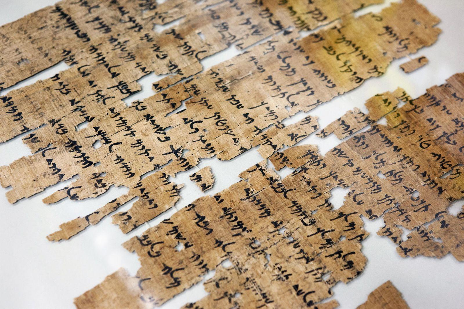 In Glas gefasster Papyrus von der Nilinsel Elephantine, im Depot des Archäologischen Zentrums (c) Staatliche Museen zu Berlin / Juliane Eirich