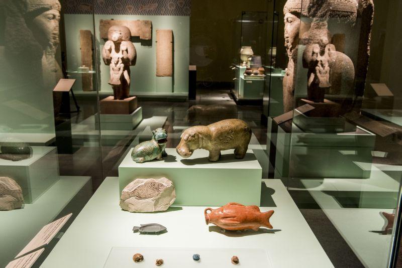 """Tiervitrine im Raum """"Diesseits"""" © Centro Cultural La Moneda"""