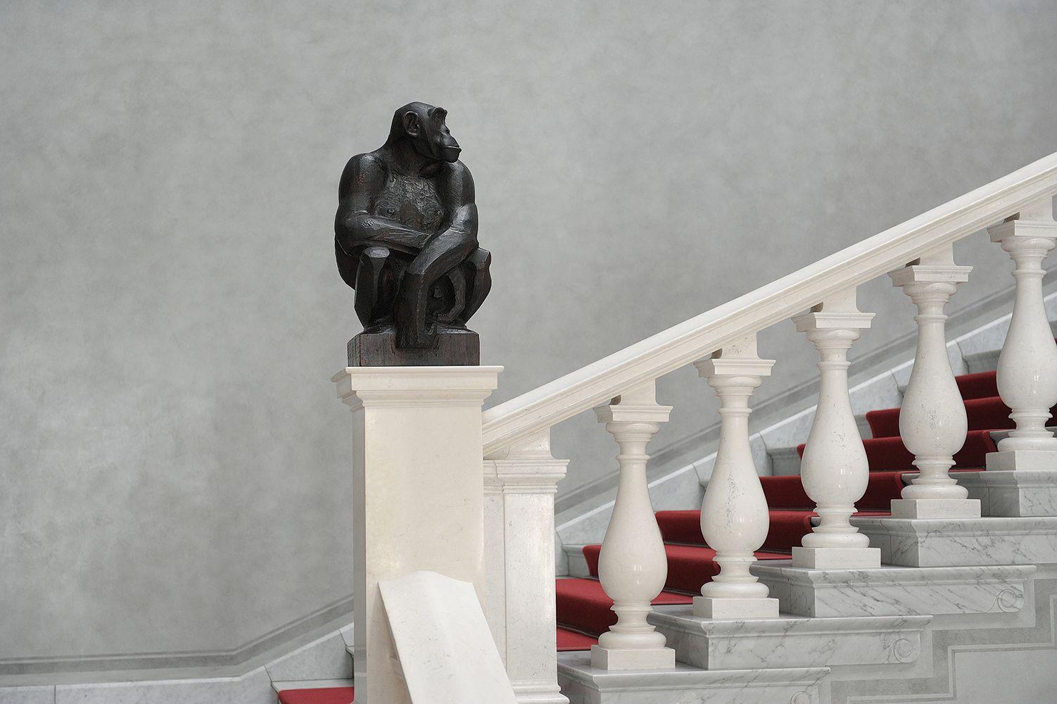 """Anton Puchegger, Schimpansin """"Missie""""  im Treppenhaus der Alten Nationalgalerie. © Staatliche Museen zu Berlin, Nationalgalerie / Andres Kilger"""
