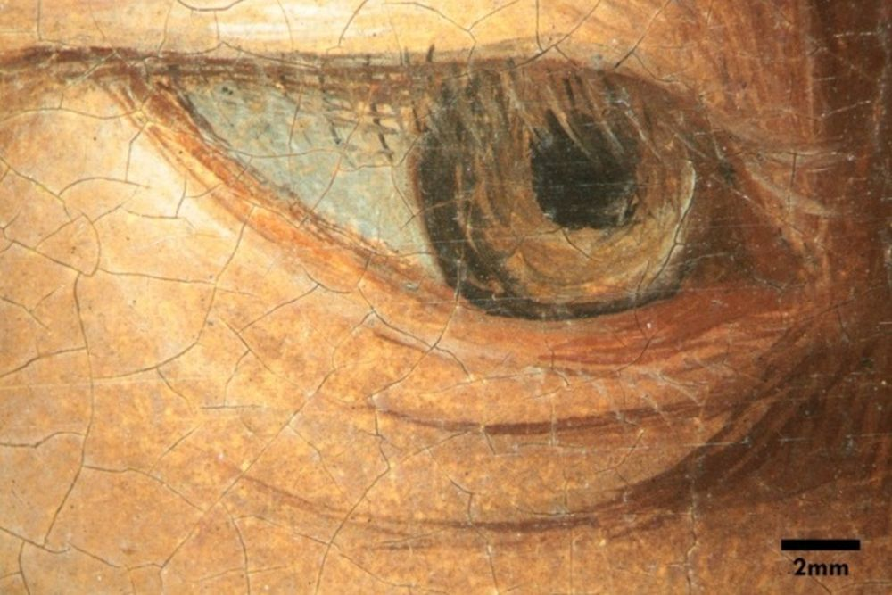 Im Stereomikroskop wird die Pinselführung sichtbar © Staatliche Museen zu Berlin, Gemäldegalerie / Sandra Stelzig