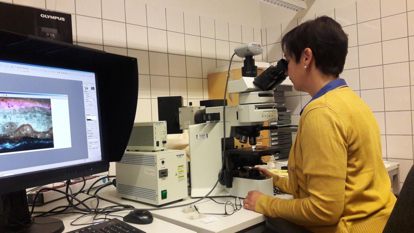 Hiltrud Jehle am Auflichtmikroskop bei der stratigrafischen Untersuchung eines Malschichtaufbaus. © Staatliche Museen zu Berlin / Dieter Köcher