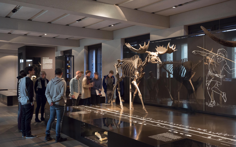 Die Sammlung des Museums für Vor- und Frühgeschichte reicht bis in die letzte Eiszeit zurück. © Staatliche Museen zu Berlin / David von Becker