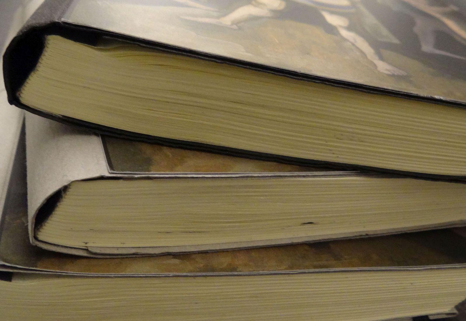 Besucherbücher zur Ausstellung, Foto: Maria Obenaus