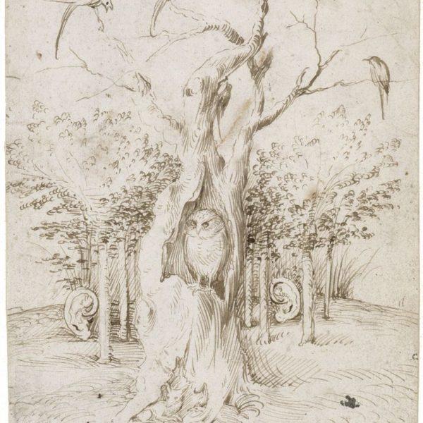 Hieronymus Bosch, Das Feld hat Augen, der Wald hat Ohren, um 1500–05 © Staatliche Museen zu Berlin, Kupferstichkabinett / Jörg P. Anders