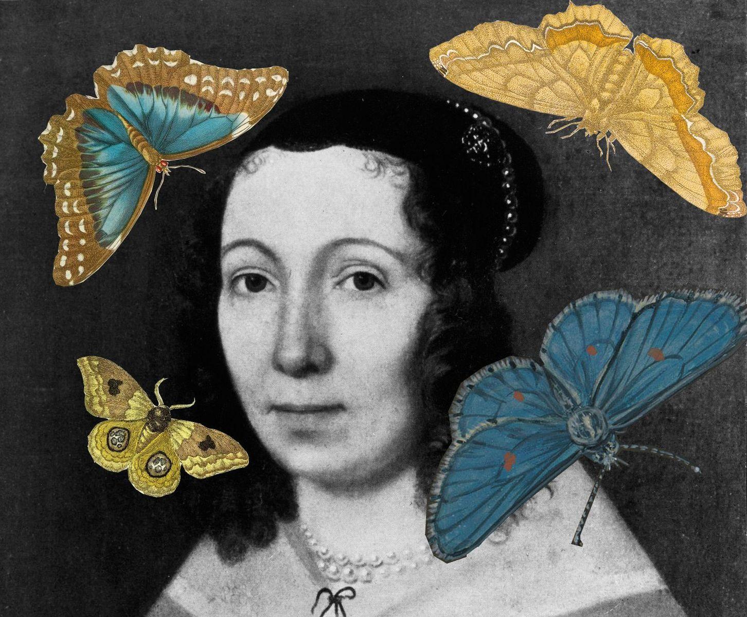 Maria Sibylla Merian, Portrait, Gemälde (o.J.) (Collage), © bpk