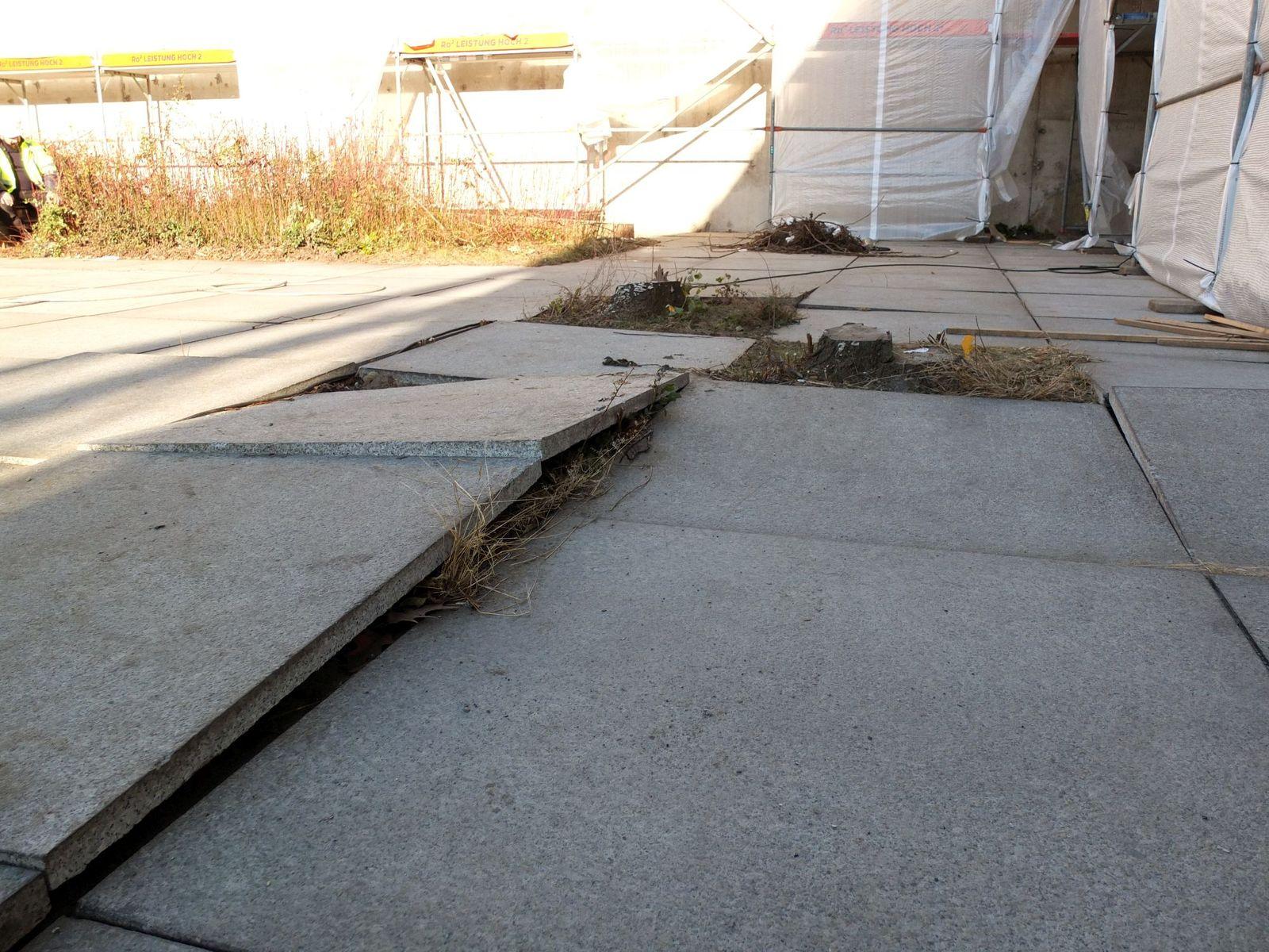 Angehobene Platten und Verwerfungen im Bodenbelag im Skulpturengarten, Foto: schmedding.vonmarlin.