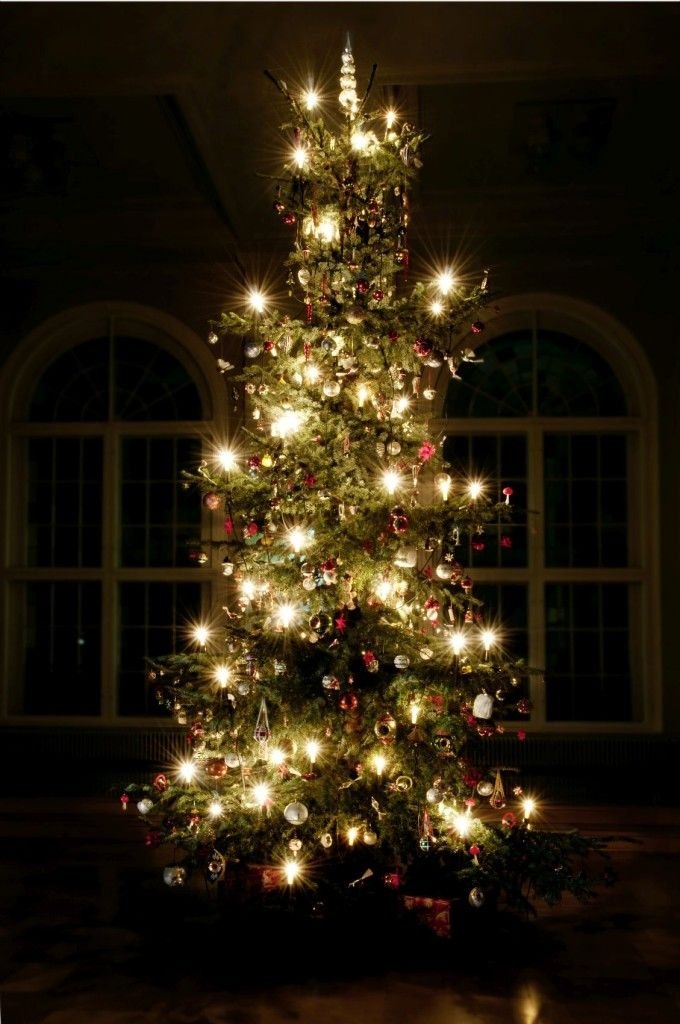Der historische Weihnachtsschmuck dekorierte 2014 den Weihnachtsbaum im Foyer des Museum Europäischer Kulturen © Staatliche Museen zu Berlin, Museum Europäischer Kulturen / Ute Franz-Scarciglia