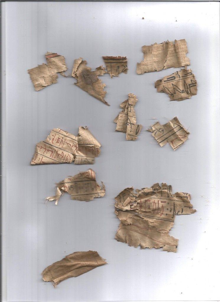 Papyrusfragmente vor der Glättung (Aufnahme im Magazin: S. Steiß und F. Seyfried)